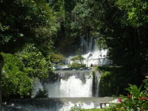 cascate YS Falls